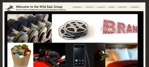 WildEastGroup 300x136 WordPress Design & Development